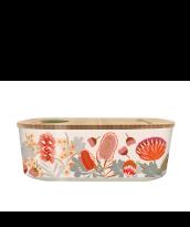 bioloco plant lunchbox, protea